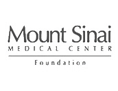Mount sinai IT Support Provider